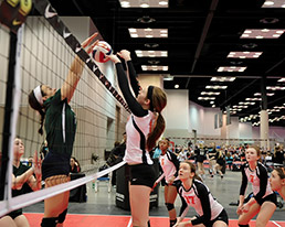 meetingguide-volleyball-15col.jpg