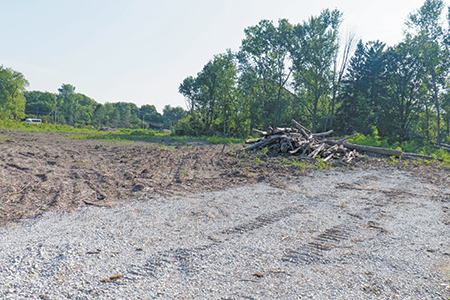 Trees cleared from senior-living site without proper permits